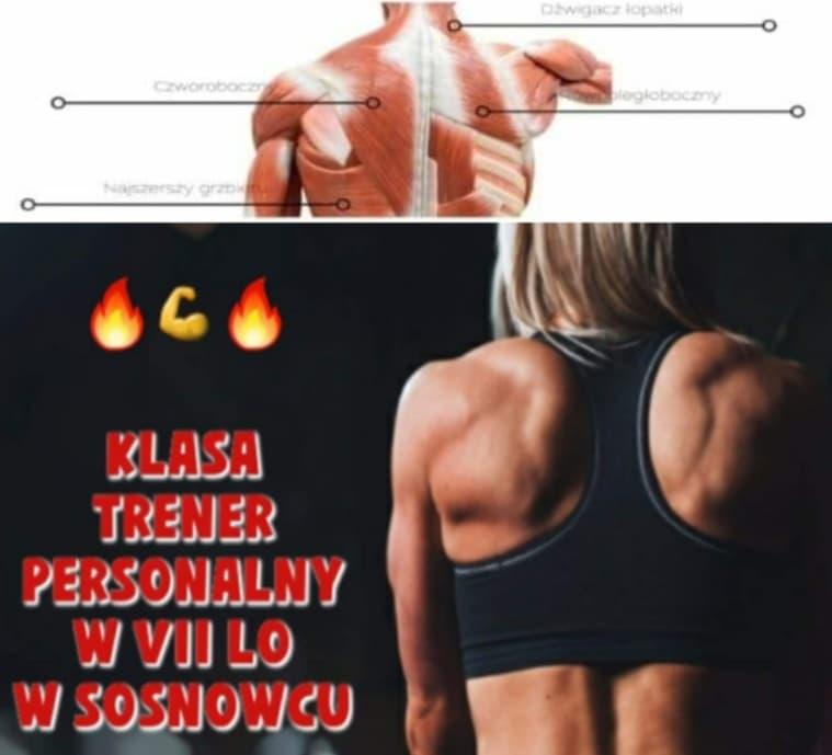 Innowacyjne wykłady z anatomii, dietetyki, psychologii, fizjologii i motoryki dla klas trenera personalnego.